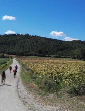 Tour del Polesine: Delta del Po, piadine con l'anguilla e spritz