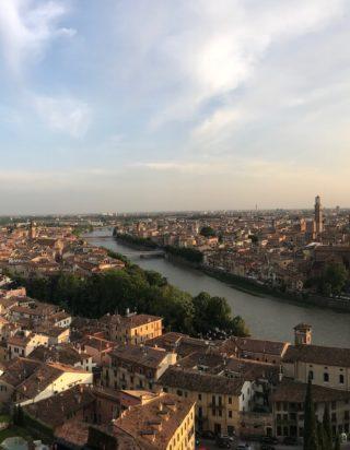 Vivi Verona