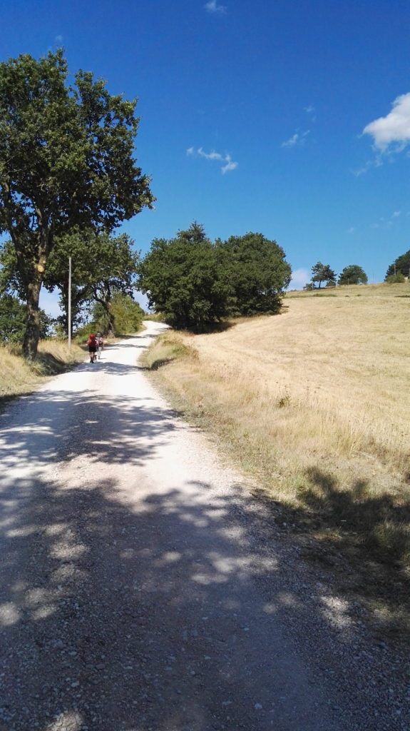 sentiero lungo il cammino di San Francesco